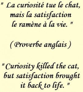 Proverbes Et Expressions Anglaises Stage Anglais